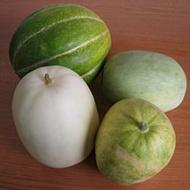 Melon Types