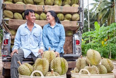 Man and woman durian farmers, Thailand