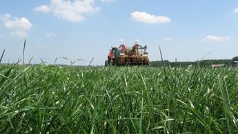 Grassland Promo Image