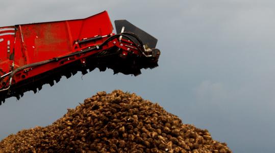 Повышение урожая сахарной свеклы