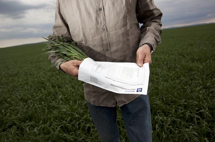 Megalab Pflanzenanalyse-Service