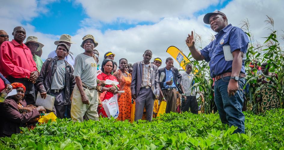 Yara Crop Nutrition approach in Zambia