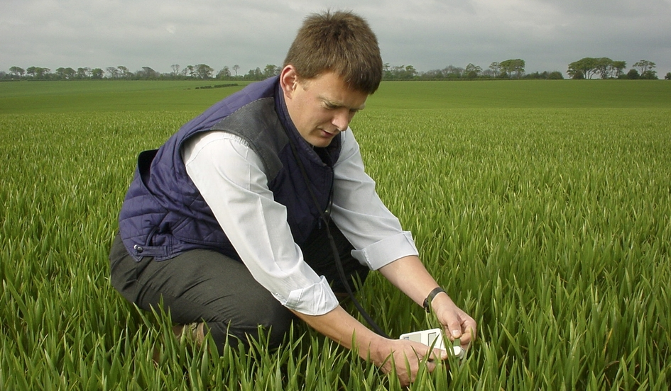 How to determine the optimum N rate for cereals