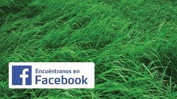 01 Img Redes sociales Homepage