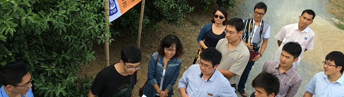 A field trip for Yara China's agronomists.