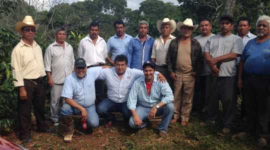 Mexican coffee farmers