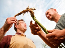 Farmer and agronomist interacting