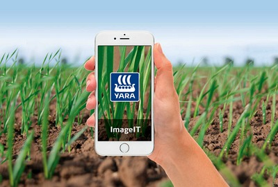 Yara ImageIT - for gai based nitrogen recomendations