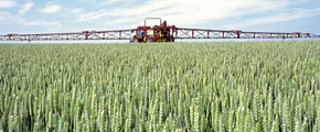 Yara Nitrogen crop fertilizer