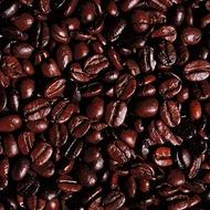 Coffee Crop Nutrition