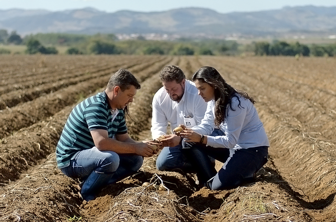 Two Yara employees talking to potato farmer on field