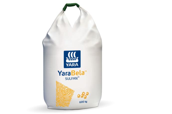 YaraBela bag