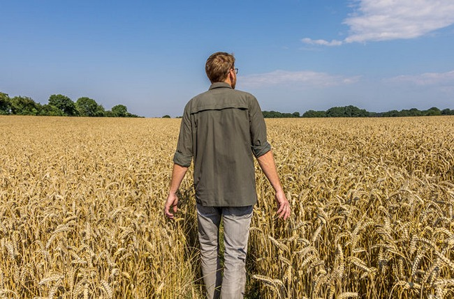 Yara farmer walking through grain field
