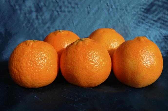 mandarina mediterránea