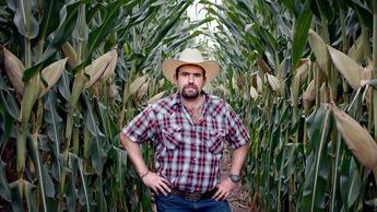 El maíz aumentó su producción