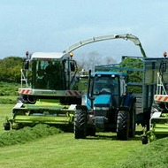 Boosting selenium levels in grass silage