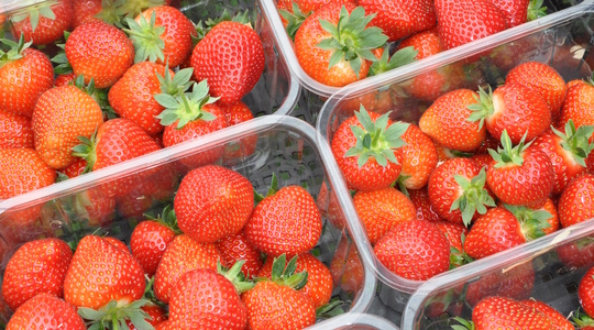 How to influence strawberry quality