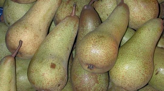 Aumento del peso dei frutti delle pomacee