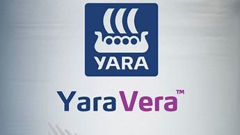 YaraVeraSaco