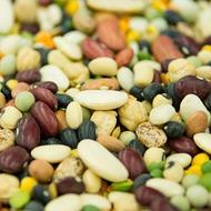 Beans Crop Programme