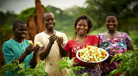 Ivory Coast group with fruit