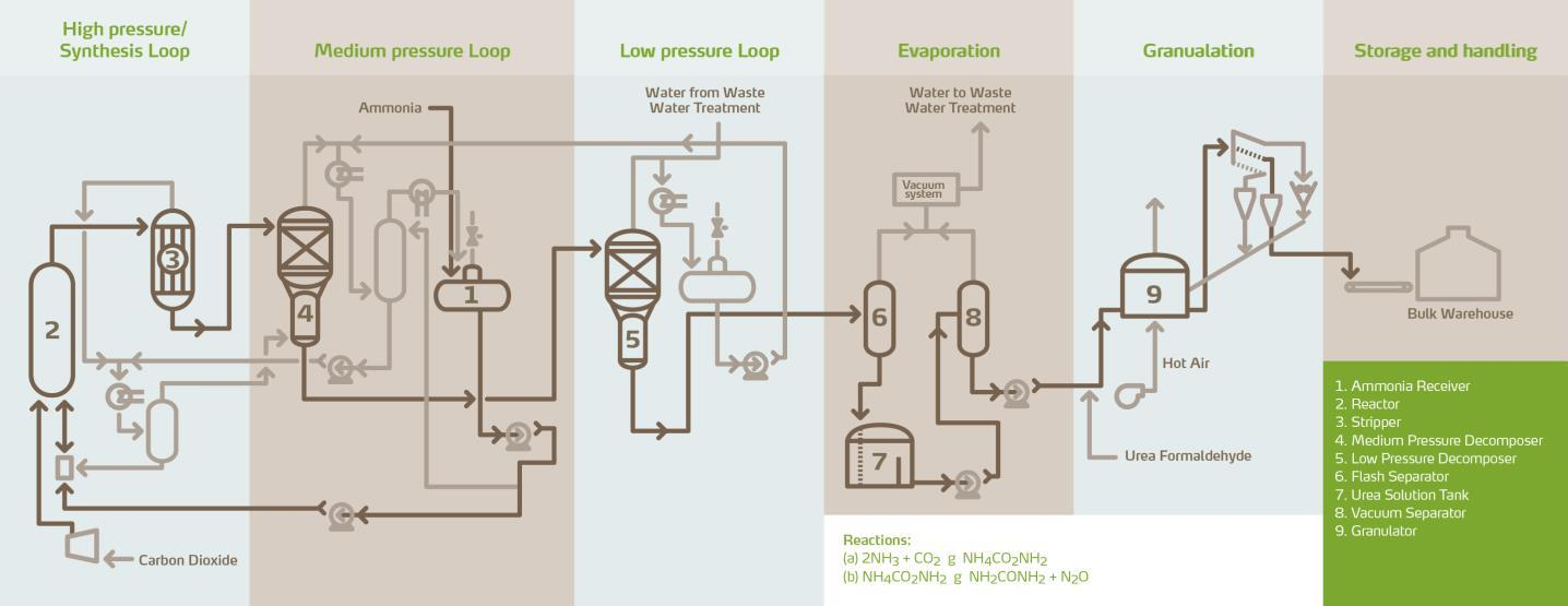 Animal nutrition production process