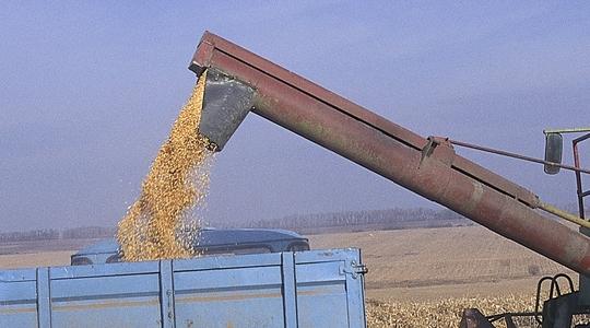 Los mercados del maíz