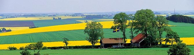 Yara Sweden