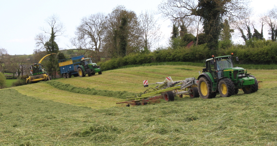 Top tips for making late season silage