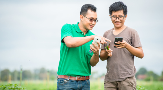 Agronomist and farmer using smartphone
