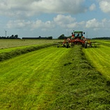 Silage Programmes