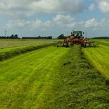 Programa de fertilización para praderas - Ensilaje