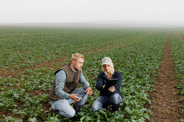 Farmer consulting