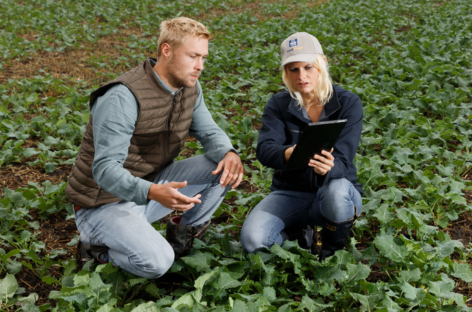 Yara agronomist pointing to a tablet device for a farmer on a field