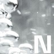Role of Nitrogen