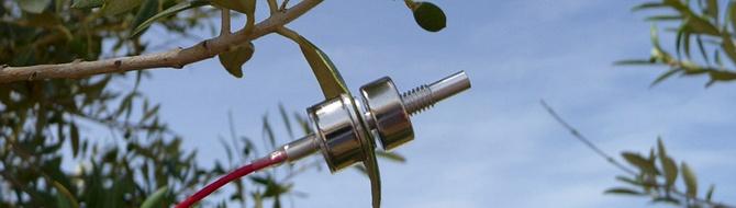 crop water sensor technology