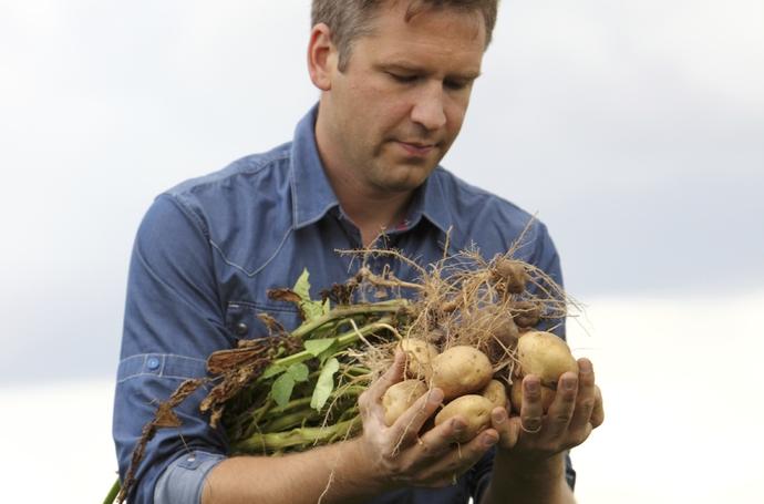 Susţinerea dezvoltării sănătoase a cartofilor