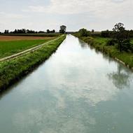 Increased Water Use Efficiency in Barley Production