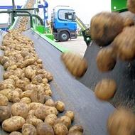 Reduzindo descoloração da batata