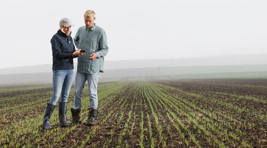 雅苒智库—找到正确的化肥产品