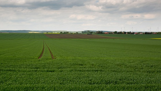 why spring fertilizer applications are more successful