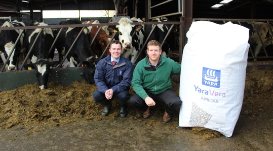 Sulphur improves silage quality