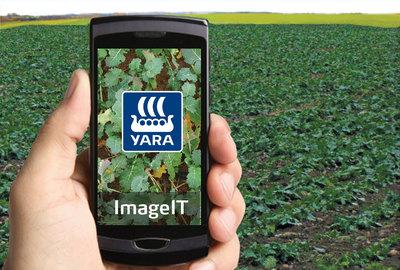 Yara ImageIT