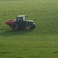 Early grass more critical than ever this spring