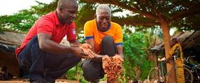 Cocoa farmers using Yara fertilizers - Ivory Coast