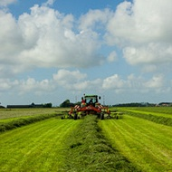 Reducir la huella de carbono en praderas