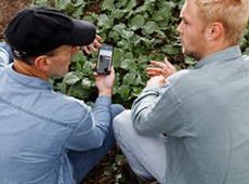 two men in field looking at app on mobile phone