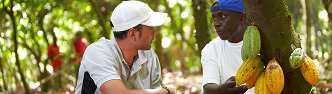 Yara agronomist in a cocoa farm