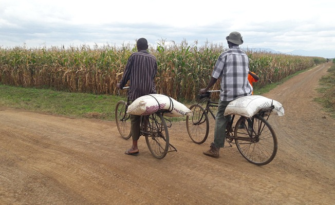 Farmers on bikes in Tanzania