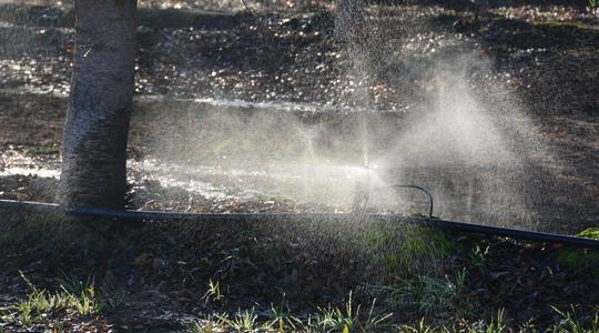 Info #12: Wassernutzungs-Effizienz
